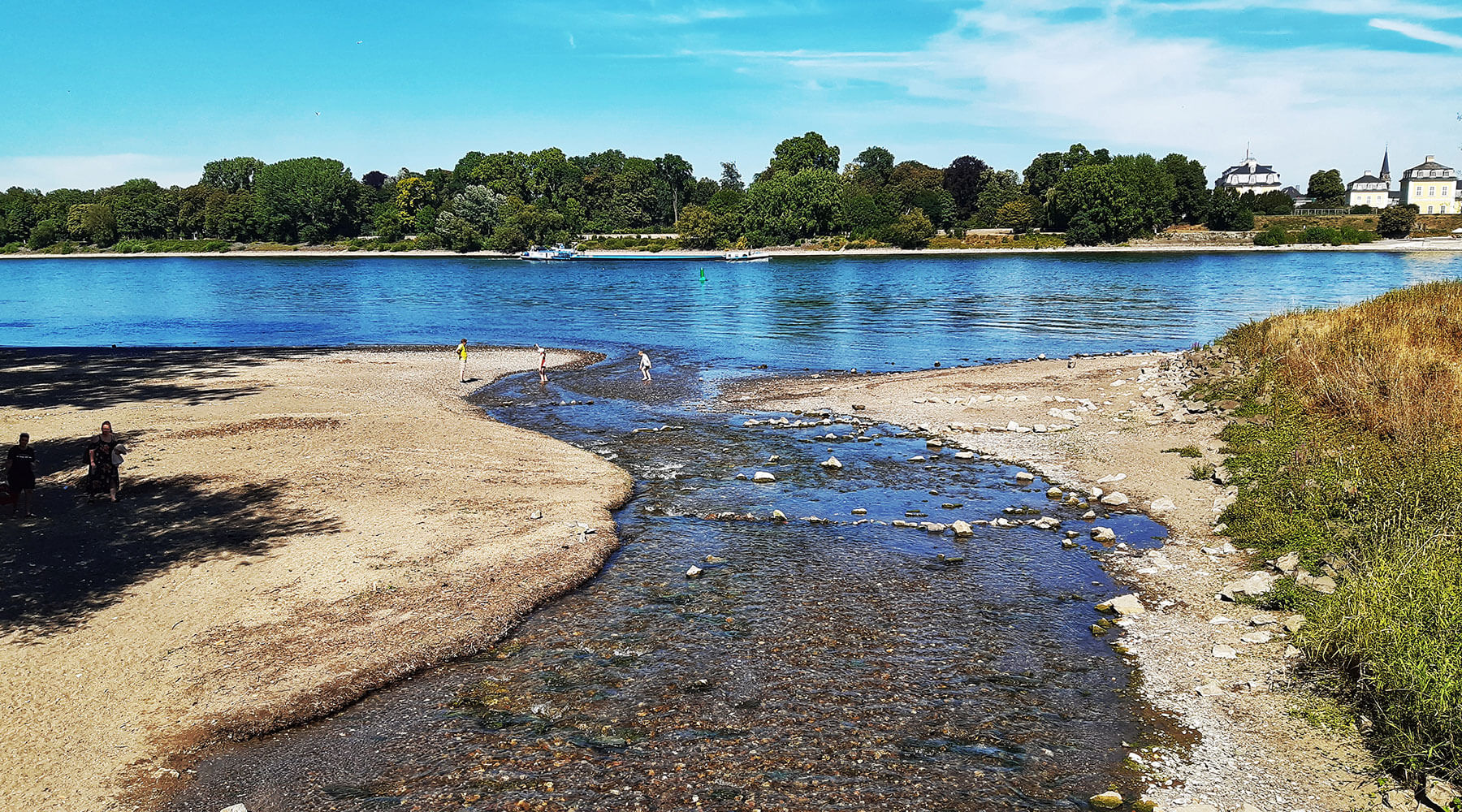 Bachlauf mündet in einem Fluss