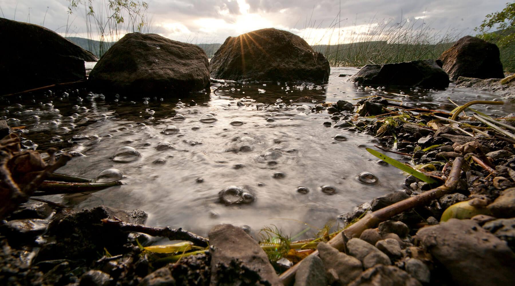 Schwefelbläschen an Laachersee
